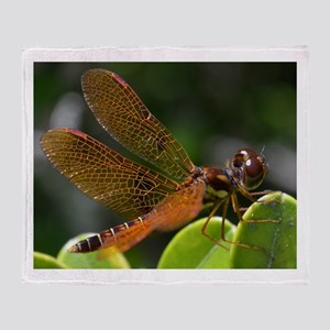 Male Amber Wing Dragonfly Throw Blanket
