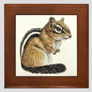 Chipmunk Cutie Framed Tile