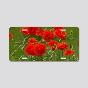 Poppies Aluminum License Plate