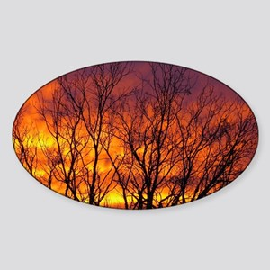 Sunrise Glory Sticker (Oval)
