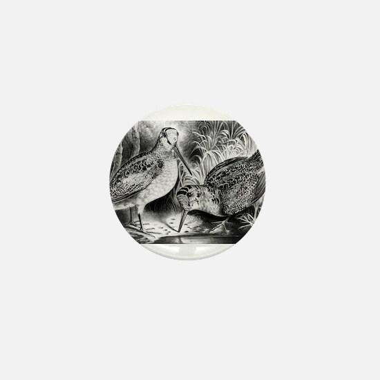 Woodcock - 1871 Mini Button