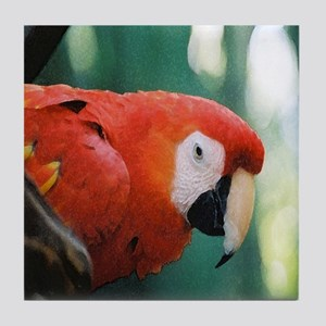 Scarlet Macaw series 1 Tile Coaster