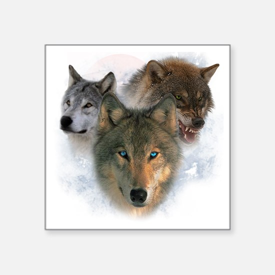 """wolves Square Sticker 3"""" x 3"""""""