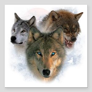 "wolves Square Car Magnet 3"" x 3"""