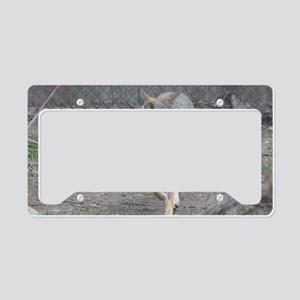 Red Wolf (5) License Plate Holder