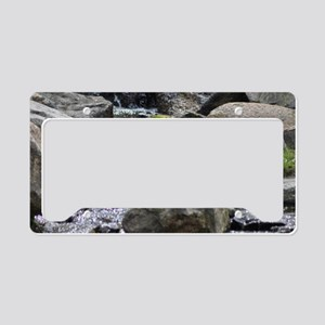 Water (3) License Plate Holder