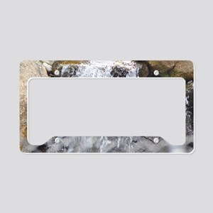 Water (4) License Plate Holder