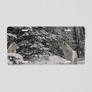 Untitled-10 Aluminum License Plate