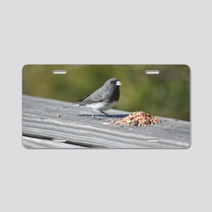 Dark-Eyed Junco Aluminum License Plate