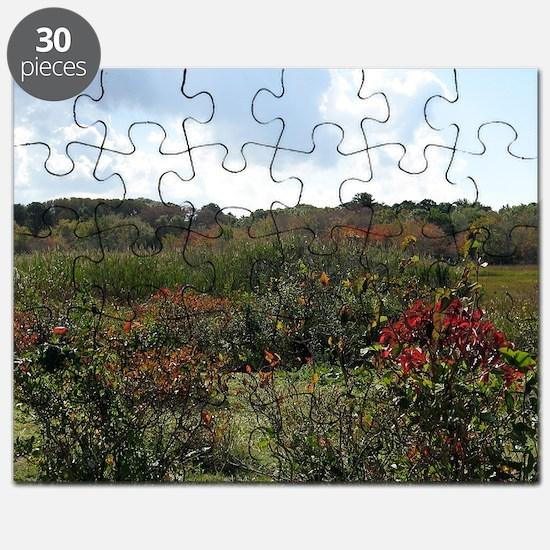 scortoncreekmarsh Puzzle