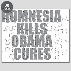 Romnesia Kills Obama Cures Puzzle