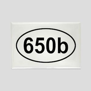 605b Rectangle Magnet