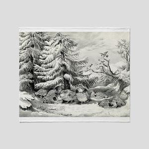 Snowed up - ruffed grouse in winter - 1867 Throw B