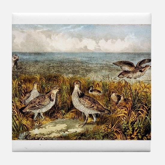 Shooting on the prairie - 1907 Tile Coaster