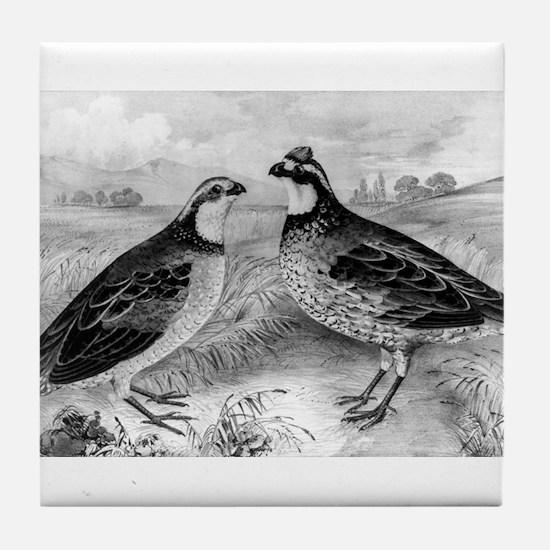 Quails - 1849 Tile Coaster