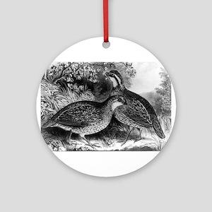 Quail - or Virginia partridge - 1871 Round Ornamen