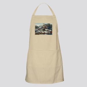 Brook trout--just caught - 1907 Light Apron
