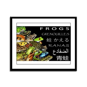 Frogs of the World Framed Panel Print