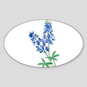 Watercolor Bluebonnet 1 Sticker