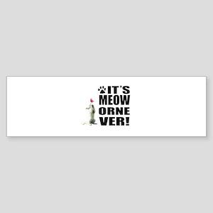 Logo Kitten Bumper Sticker