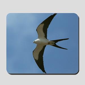 Swallow-tailed Kite Mousepad