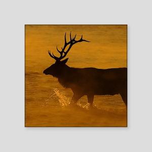 "Bull Elk at Sunrise Square Sticker 3"" x 3"""