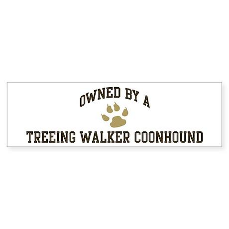 Treeing Walker Coonhound: Own Bumper Sticker