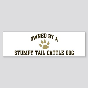 Stumpy Tail Cattle Dog: Owned Bumper Sticker