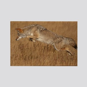 Coyote Flying Rectangle Magnet