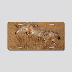 Coyote Flying Aluminum License Plate