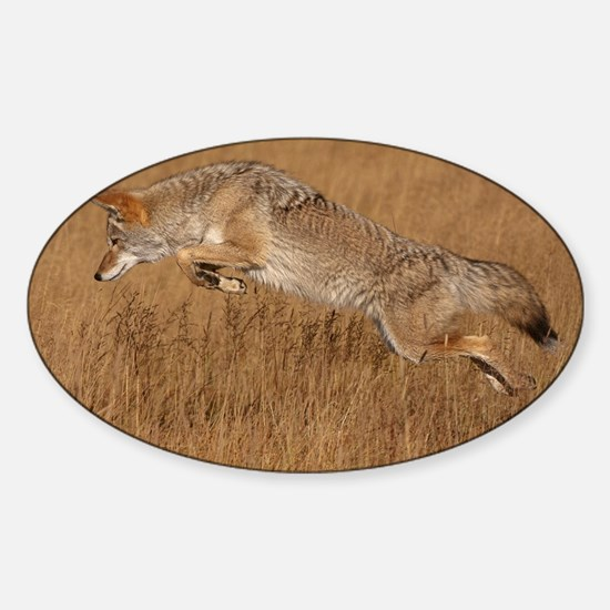 Coyote Flying Sticker (Oval)