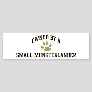 Small Munsterlander: Owned Bumper Sticker