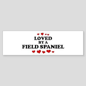Loved: Field Spaniel Bumper Sticker