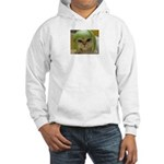 Funny Cat Hooded Sweatshirt