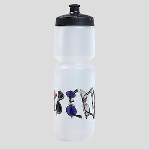 VarietyColorfulGlasses082611 Sports Bottle