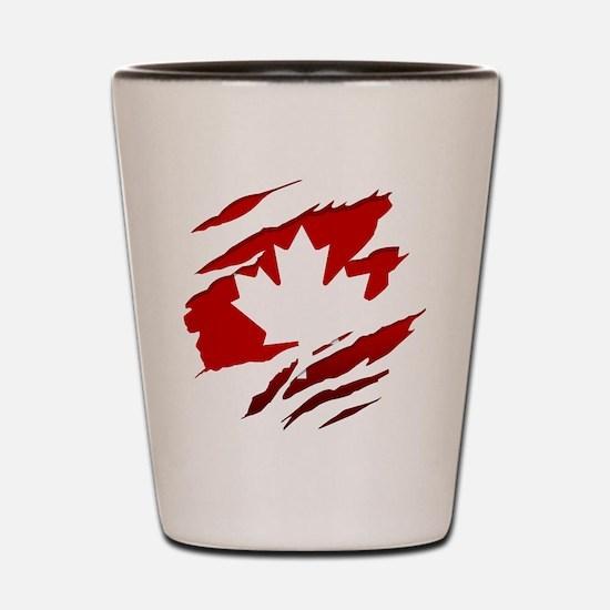Unique Montreal Shot Glass
