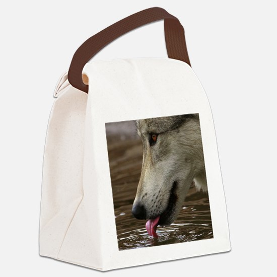 Thirsty, But Watchful Canvas Lunch Bag