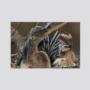 Anhinga...Living in the Sticks Rectangle Magnet