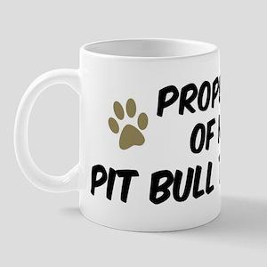 Pit Bull Terrier: Property of Mug
