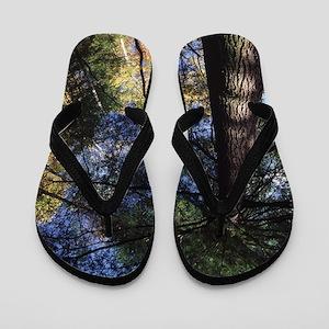 old growth hemlock tree Flip Flops