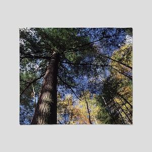 old growth hemlock tree Throw Blanket