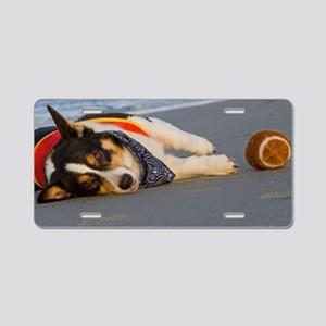 Unnecessary Roughness Aluminum License Plate