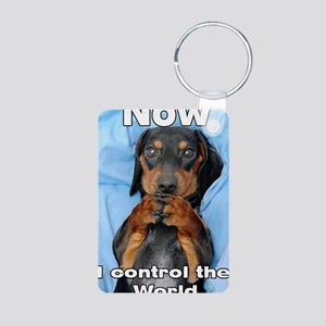 Now I Control The World Aluminum Photo Keychain