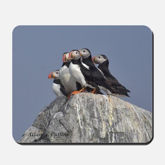 5 puffins Mousepad