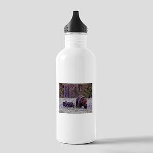 Grizzly Bear 399 Water Bottle