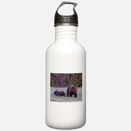 Grizzly Bear 399 Water Bottle