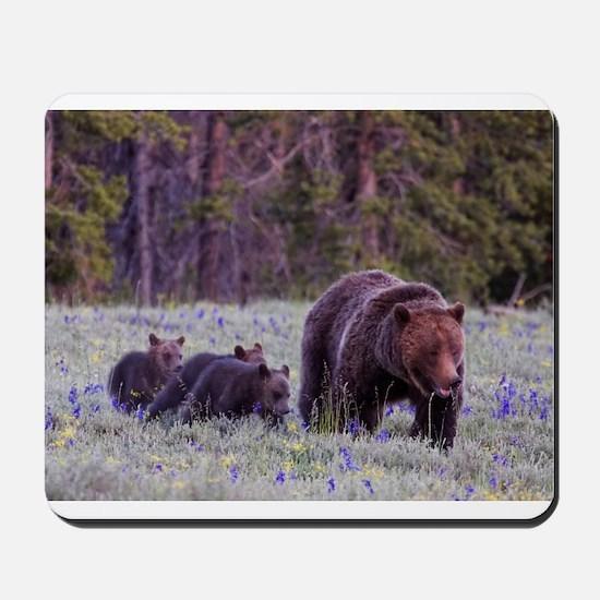 Grizzly Bear 399 Mousepad