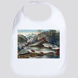 Brook trout--just caught - 1907 Cotton Baby Bib