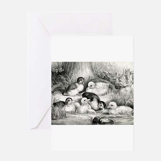 Jolly young ducks - 1866 Greeting Card