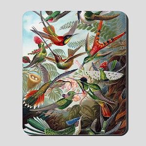 Vintage Hummingbird Mousepad